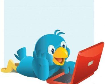 Pérolas do Twitter #4