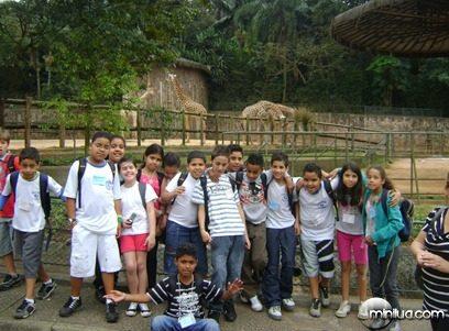 Zoologico 1