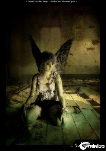 anjos-no-photoshop05[2]