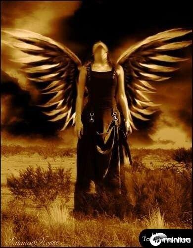 anjos-no-photoshop08[2]