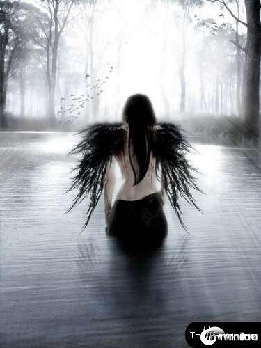 anjos-no-photoshop14[2]