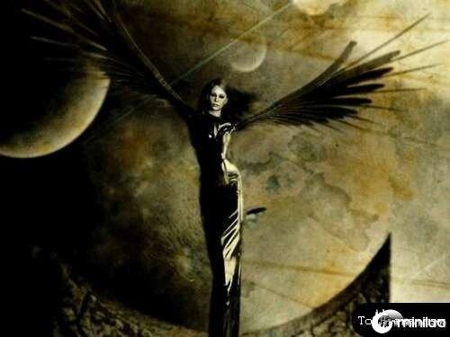 anjos-no-photoshop21[2]