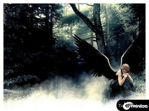 anjos-no-photoshop23[2]