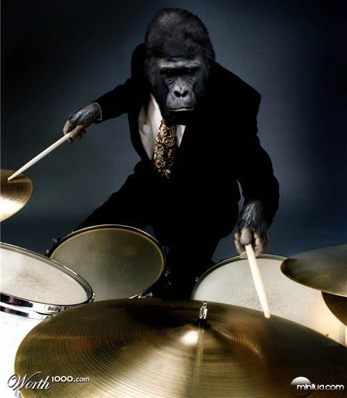 gorilla_drums