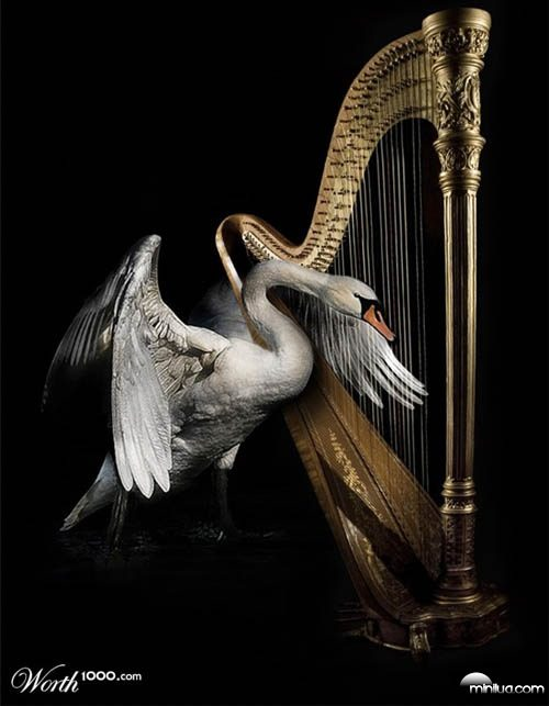 swan_harp