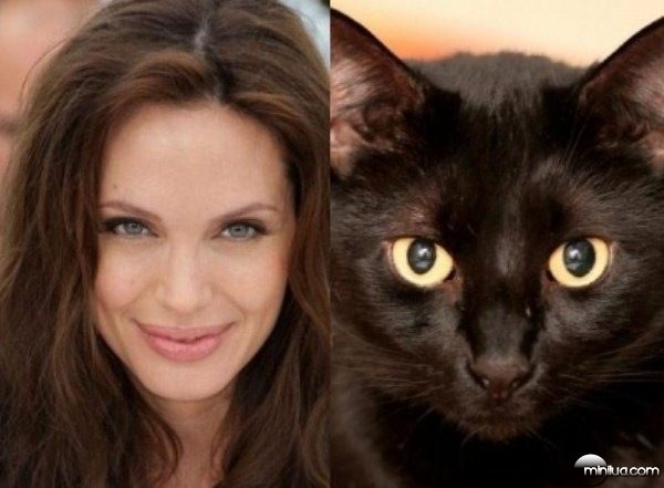 celebrity-cats-15