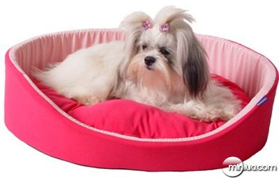 cama-para-cachorro