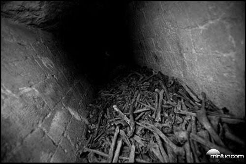 mines of Paris bones