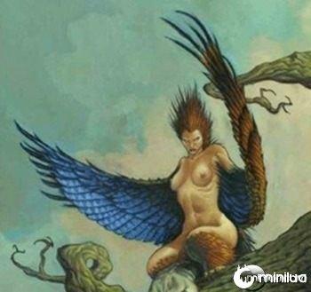 mito-animal-harpias
