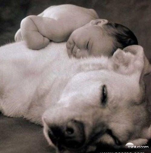 461289-Fotos-de-bebês-com-cachorros-02
