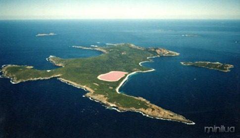 lago rosa aerea_thumb[1]