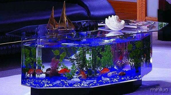 aquário 2
