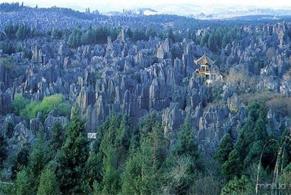 the-Stone-Forest-in-Shilin-3