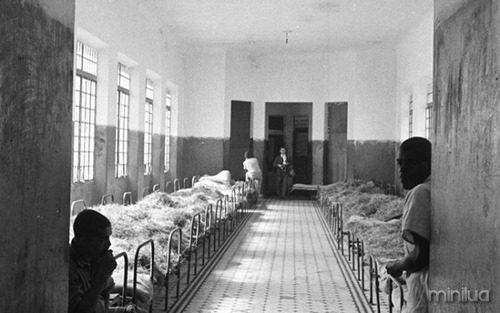holocausto brasileiro 4_link