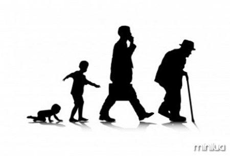 Longevityevolution