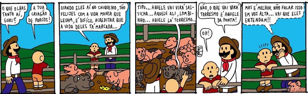 Teixeirão porco 15