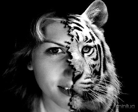 half_human_half_tiger_face_by_angel4u4ever