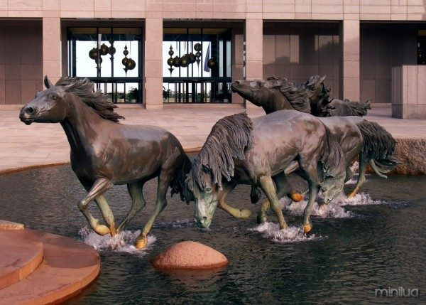 2007-11-14 Mustangs of Las Colinas 01