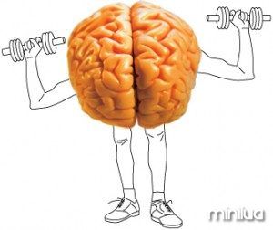 fatty-brain-300x252