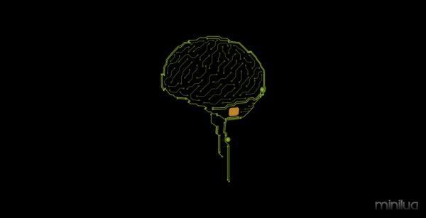 brain-760x390