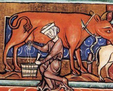 Sorte sua não ter nascido da Idade Média