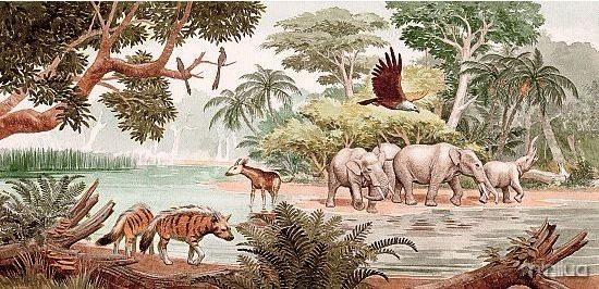 mamiferosaGirafaOligoceno