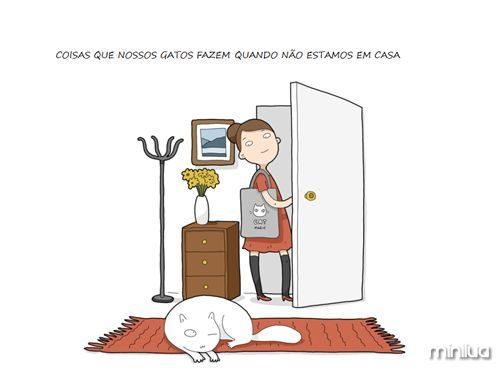 home-alone-cat-001__880