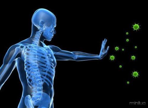 Suco-de-limão-melhora-o-sistema-imunologico