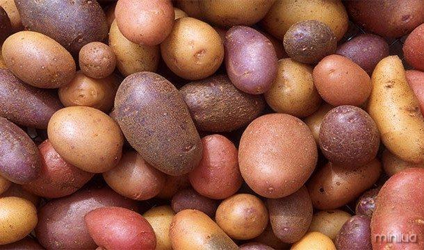 Em teoria, os seres humanos poderiam viver apenas manteiga e batatas