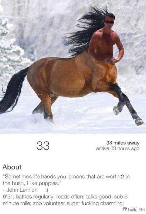 horse-tinder