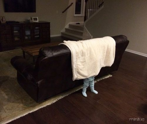 funny-kids-playing-hide-and-seek-601__605