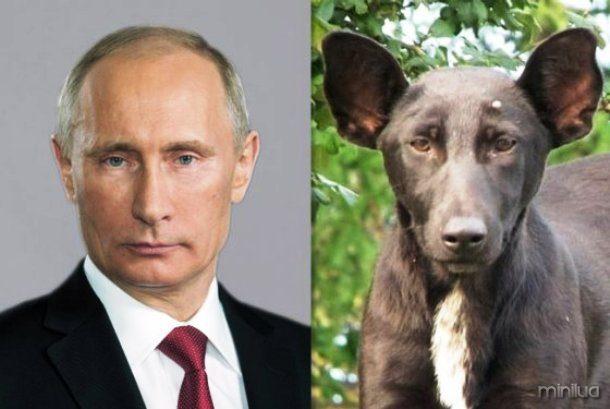 dailycaller.com-Vladmir-Putin-dog