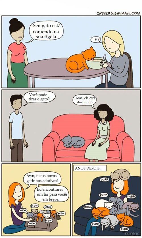 funny-cat-comics-cat-vs-human-4-579b04142b017__605