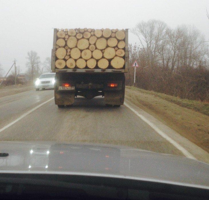 caminhão com pedaços de tronco bem