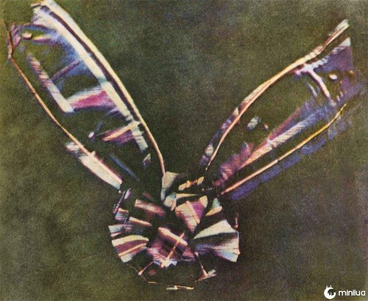 primeira fotografia da cor na história