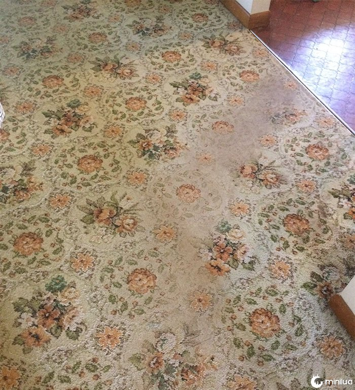My Carpet Is From The 70s And Has Never Been Replaced. This Is The Fastest Way To The Food