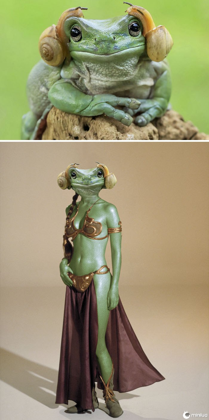 A Frog With Snails On Its Head, Resembling Princess Leia