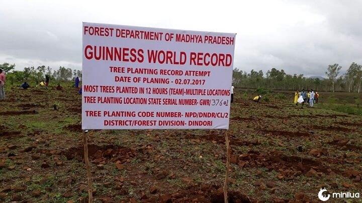 Récord en India por plantar árboles