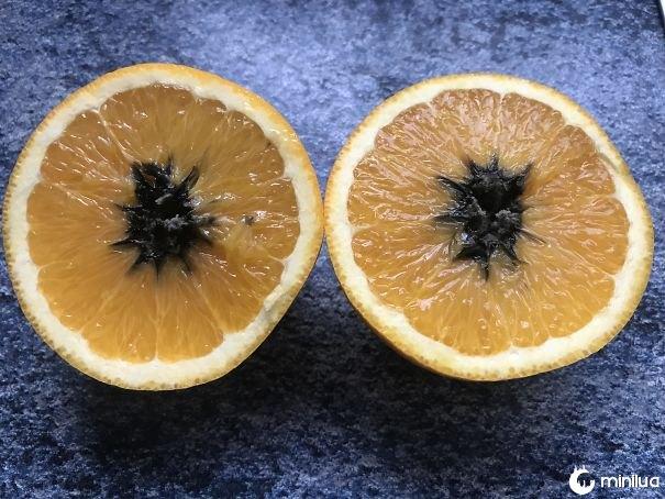 Eu cortei uma laranja para encontrar esta decadência negra vindo de seu centro