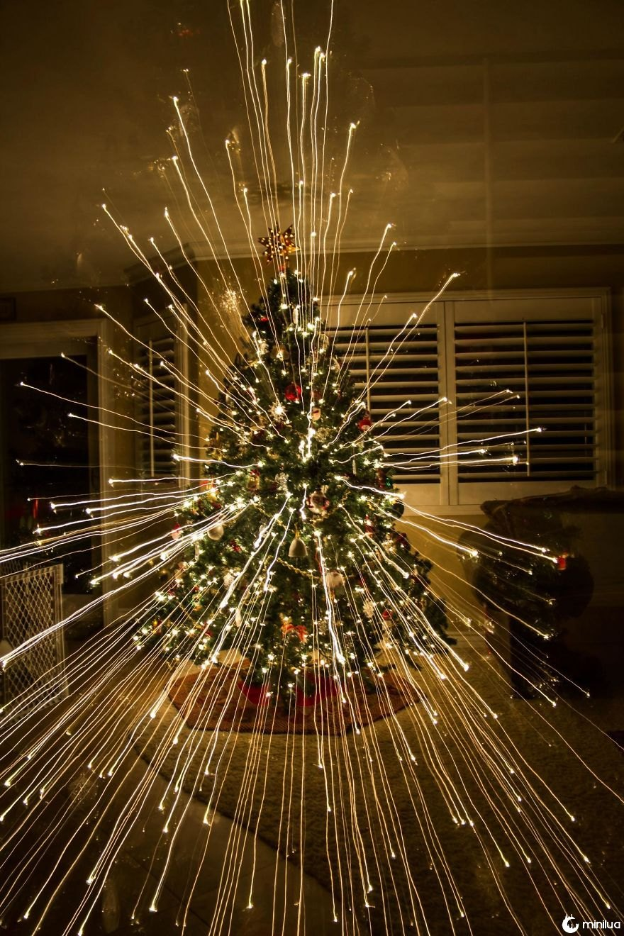 Zoomed Out Taking A Picture Of My Christmas Tree