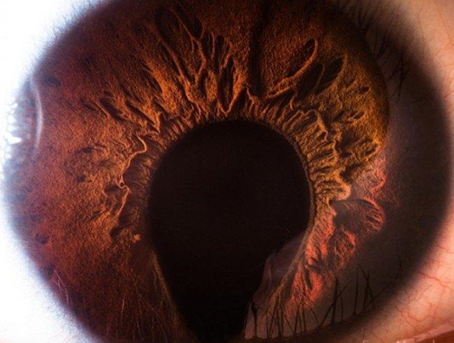 sessão de fotos para os olhos detalhe humano