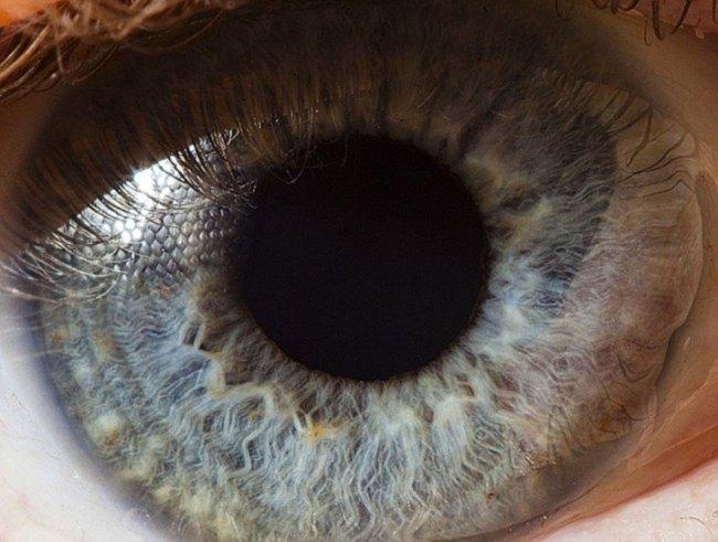 Detalhe de uns olhos azuis
