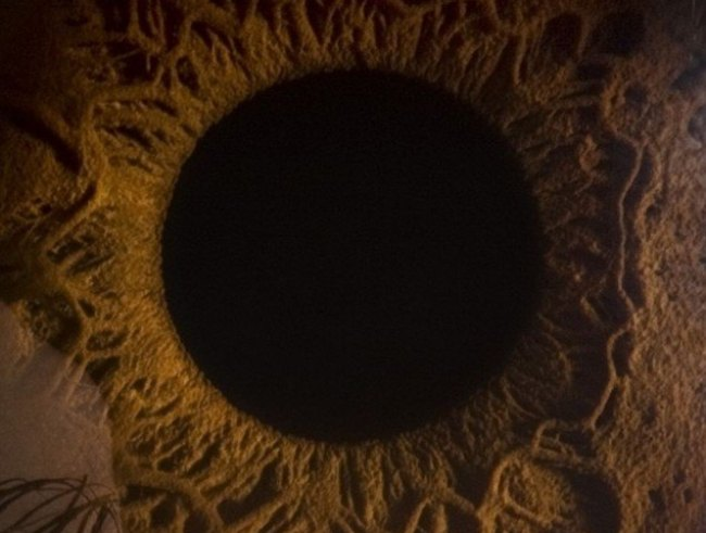 detalhe no interior do olho