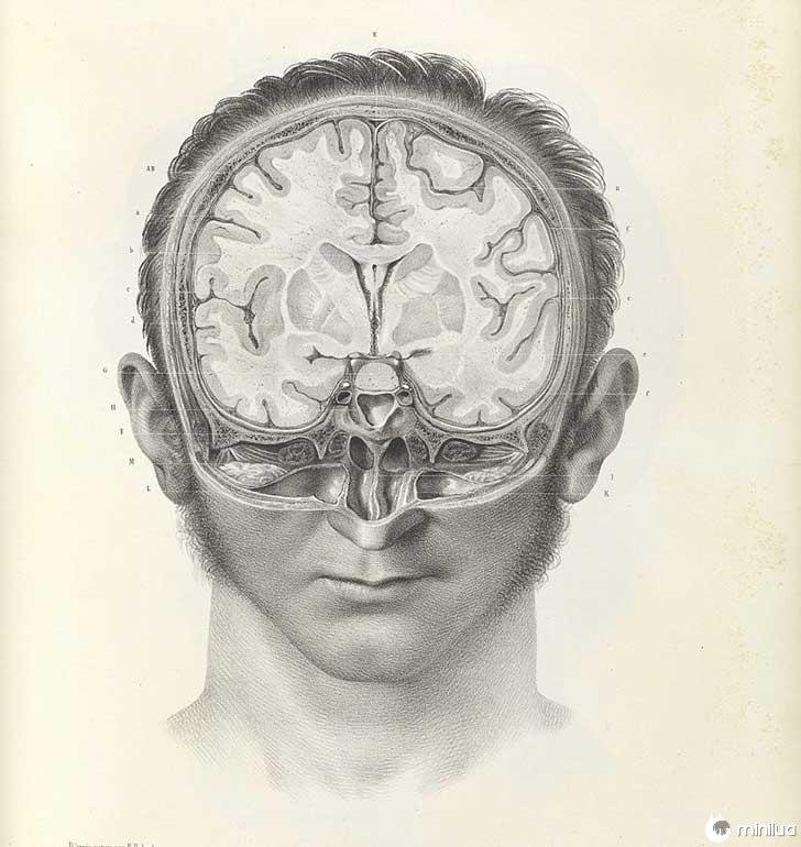 século barbara cirurgia 19 8