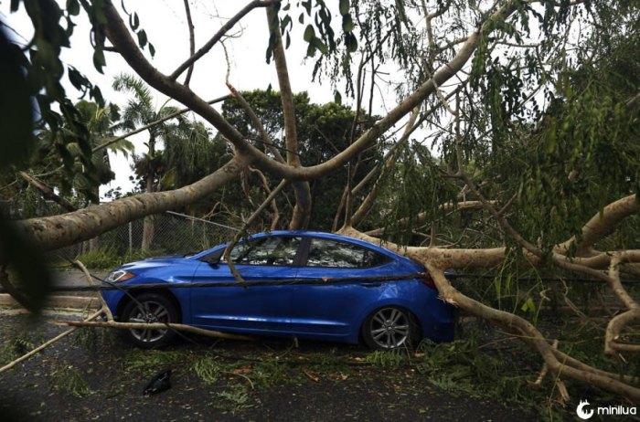 Após o furacão Irma em Porto Rico