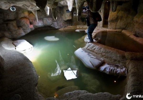 piscina com spa sob o solo na propriedade de Leyva Beltran