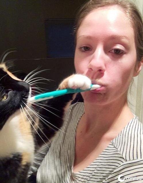 Every morning when I brush my teeth.
