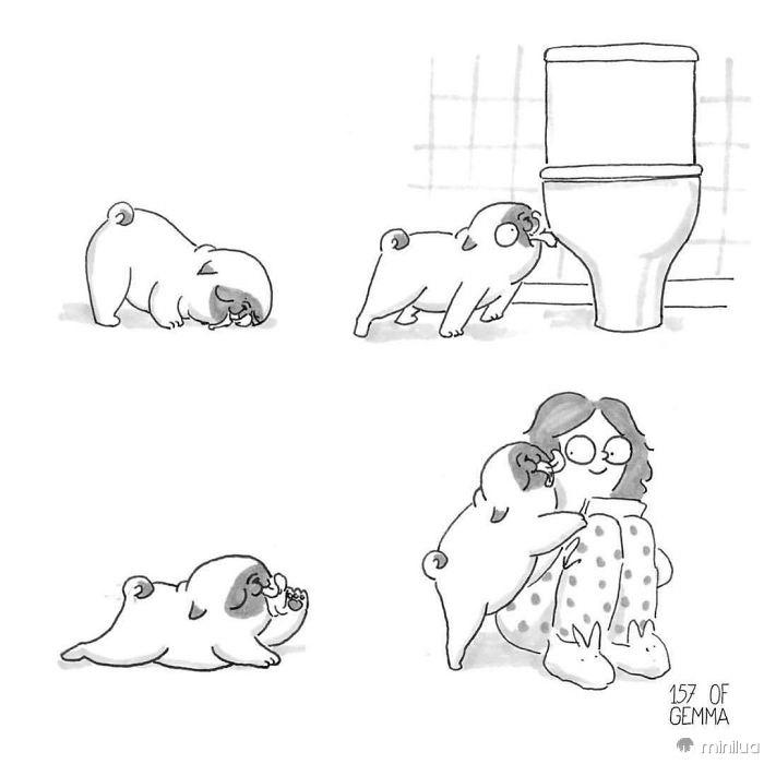 Viver-com-um-cachorro-04