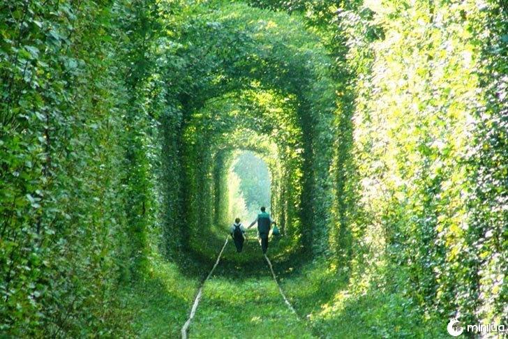 túnel com grama em torno dele