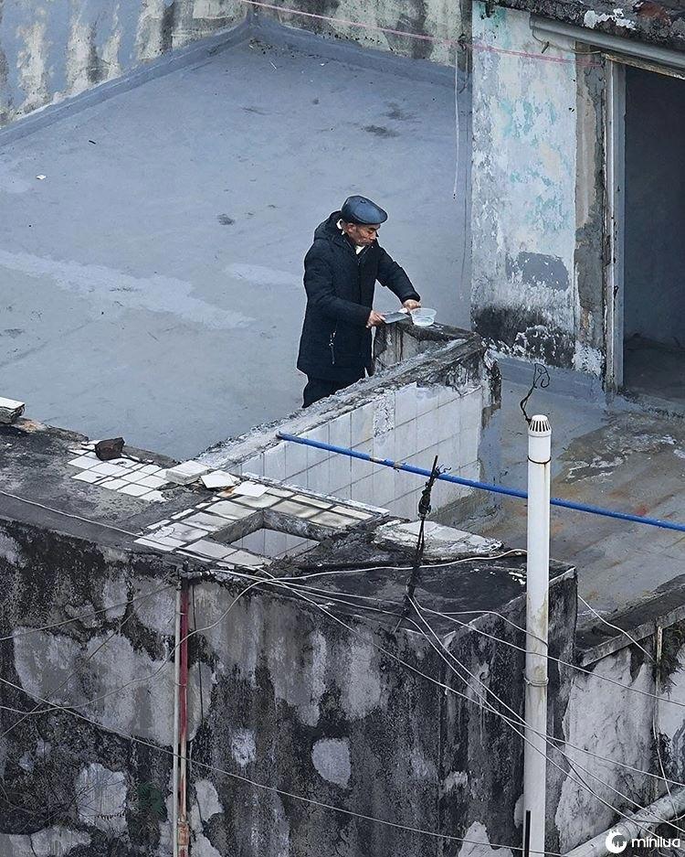 telhados de hong kong, vida cotidiana nos telhados